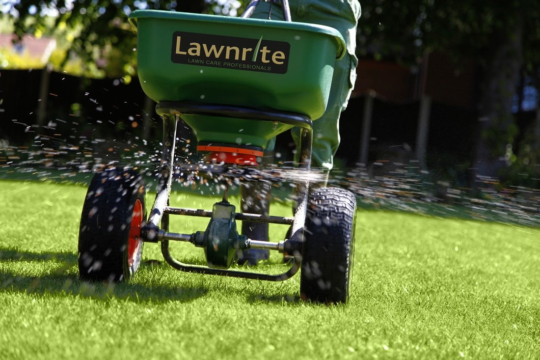Professional lawncare aldwick
