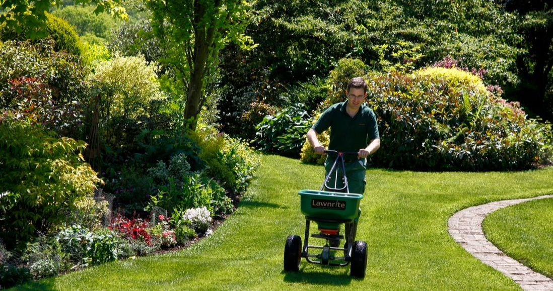 Independent lawncare in west Sussex