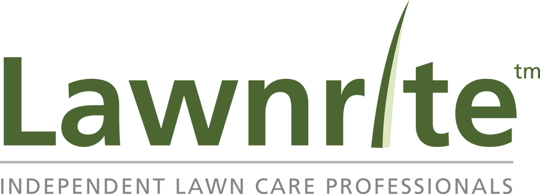 Lawncare Chichester